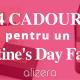 valentine's day idee cadouri