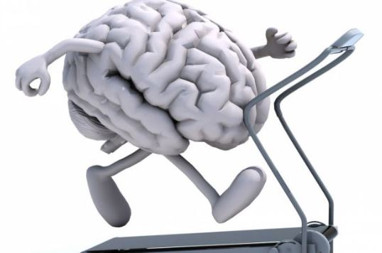 Creierul în Sarcina